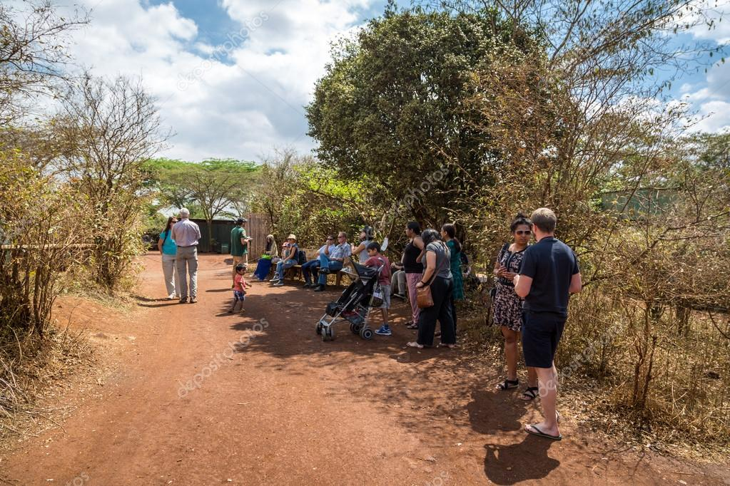 tourists arriving in Sheldrick Trust Elephant Orphans