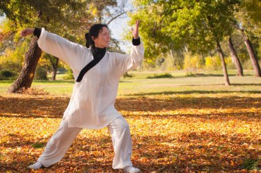 woman practicing Tai Chi in park