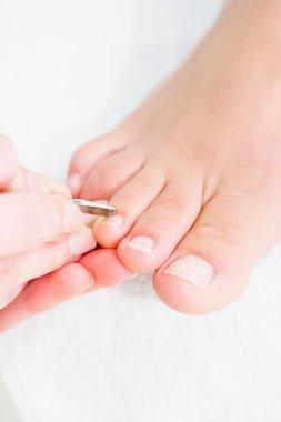 Pedicure procedure close-up