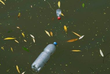 plastic bottles in river water