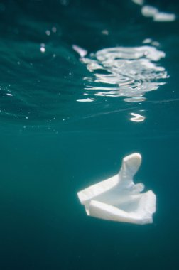 Plastic bag under the sea surface