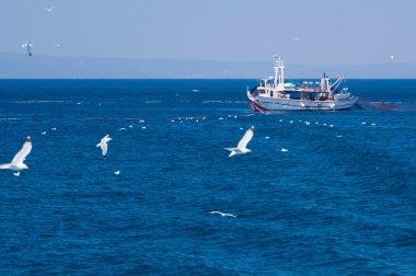Mediterranean fishing boat puliling nets