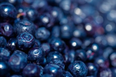 ripe Blueberries background