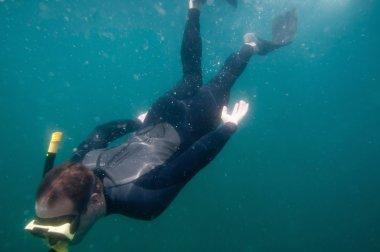 Free diver speeding through water