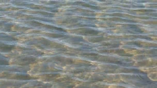 tropická pláž a moře