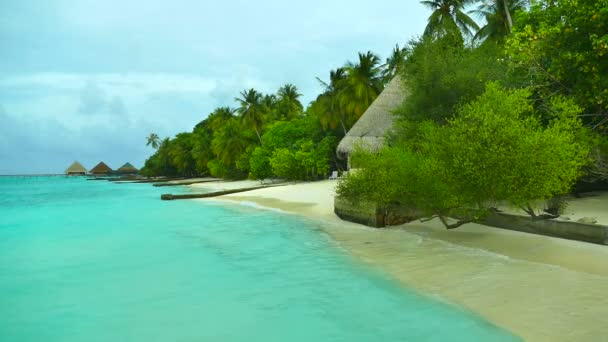 Beautiful Maldives island with ocean