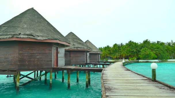 Krásný ostrov Maledivy s oceánem