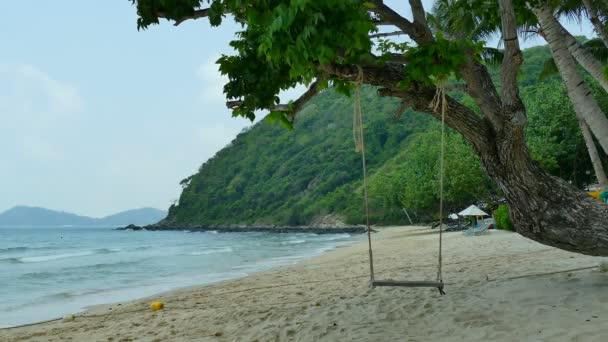 Malé swing mávat na stromě