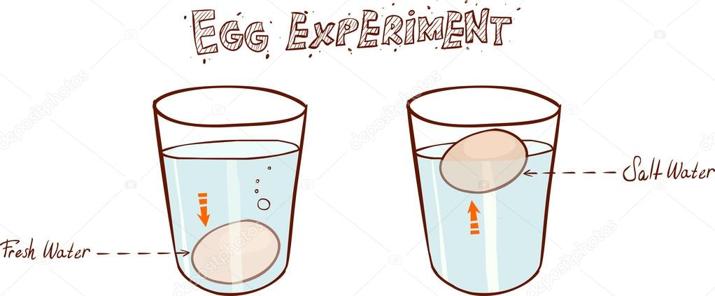 Egg Floating In Glass Of Water Sink Or Float Egg