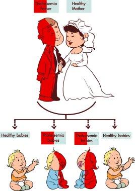 Thalassemia trait infographic