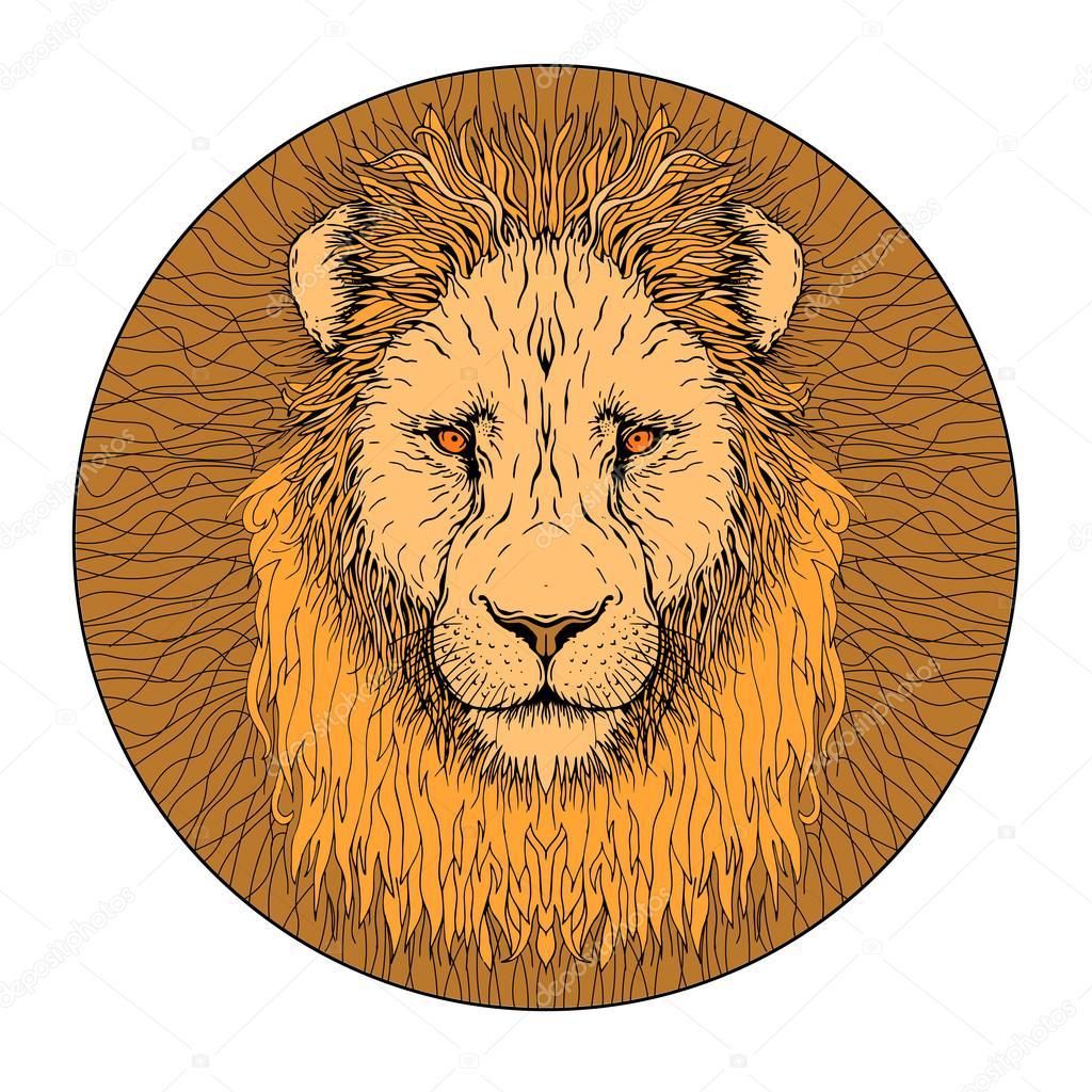 León cara color — Vector de stock © struckbarw.gmail.com #109400812
