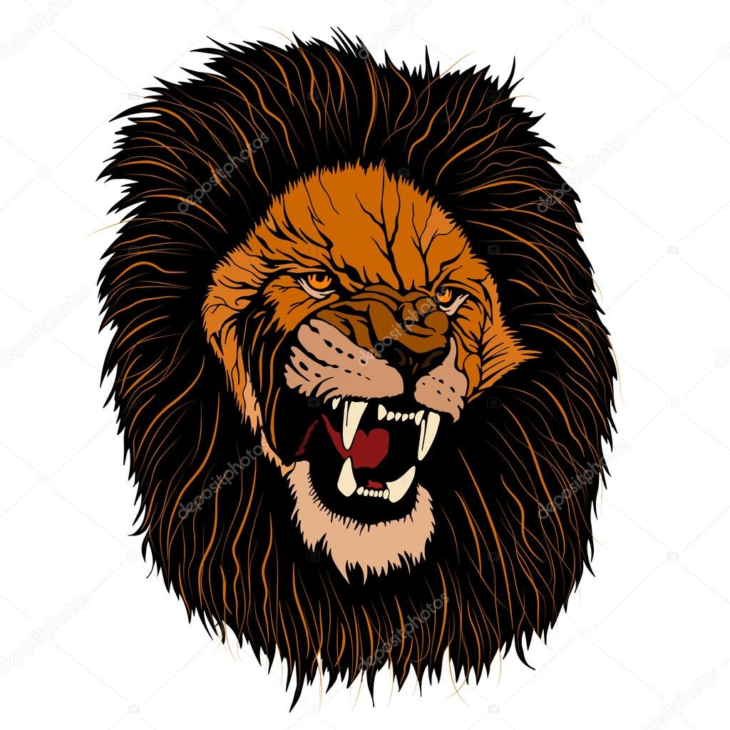 Lion face angry realistic color — Stock Vector ...