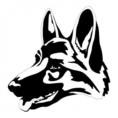 German Shepherd dog head face