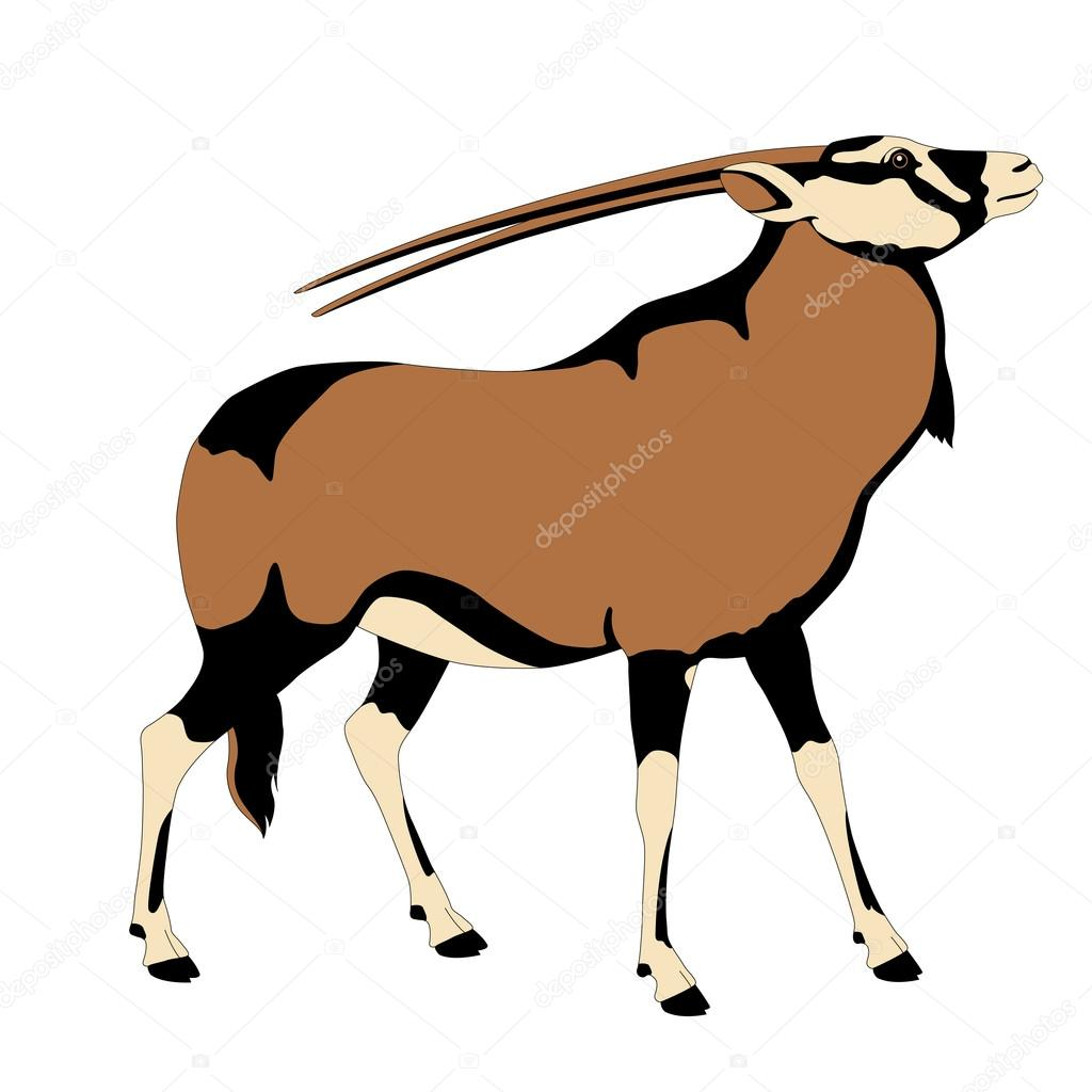 Oryks Adult Antelope Color Stock Vector C Struckbarw Gmail Com