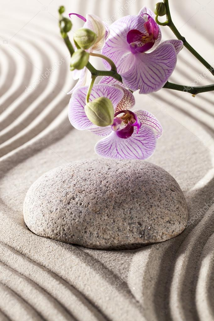 Ambiance For Spa And Massage With Zen Design Photo By Studiograndouest
