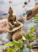 meditace s Buddha ve vodním prostředí s oblázky, zelené listy pro relaxaci