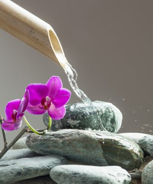 water for beauty with pebbles, orchids and bamboo for source of relaxation