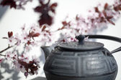 čas na čaj Zen fengshui a meditace