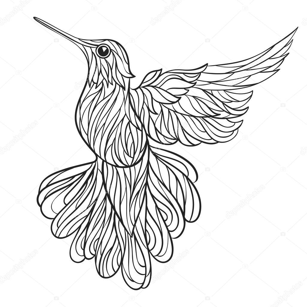 Monocromo de vector mano ilustración dibujado de colibri — Vector de ...