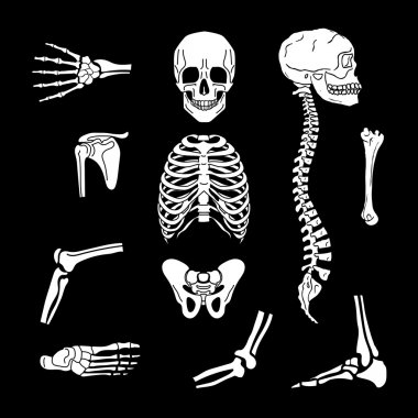 Orthopedic and spine symbols
