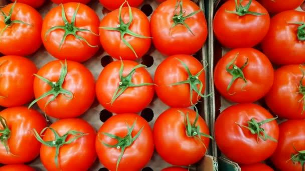 Frische Tomaten stapeln sich hintereinander auf der Theke eines Lebensmittelgeschäfts. Frisches Gemüse im Supermarkt. Glättes Schwenken von links nach rechts, 4k-Video.