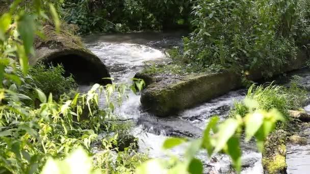 Odpadních vod odpadních znečišťuje řeky
