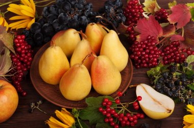 Autumn Still Life. Pears, grapes, cranberry, blackberry and yellow flowers on a dark wooden background. Vegetarian concept
