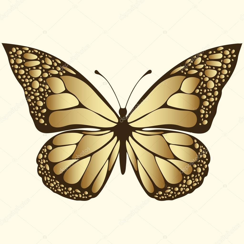Golden butterfly. Luxury design, expensive jewelry, brooch. Exotic ...