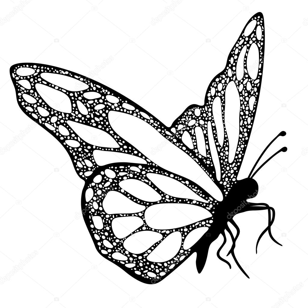 Butterfly Monochrome Coloring Book Black And White Illustration Hand Drawing Tattoo Sketch Exotic Patterned Insect Decorative Element Print