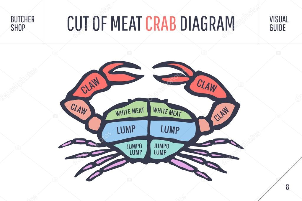 Cut Of Meat Set Poster Butcher Diagram And Scheme Crab Stock