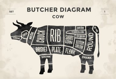 Cut of beef set. Poster Butcher diagram - Cow. Vintage typographic hand-drawn. Vector illustration.