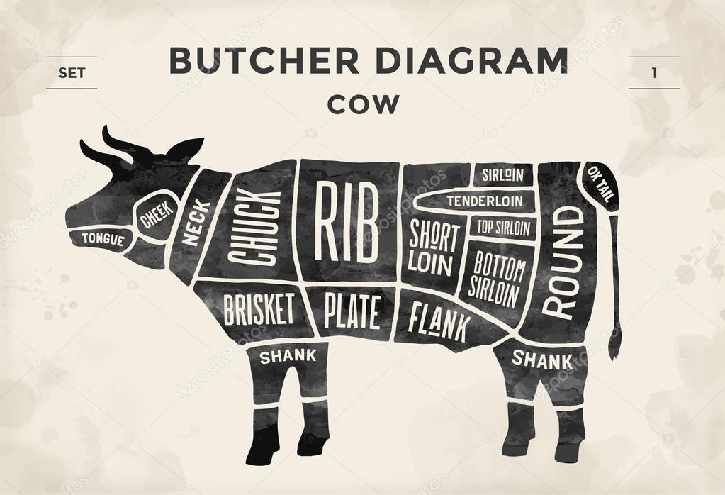 Coupe de boeuf ensemble. Diagramme de boucher affiche - vache ...