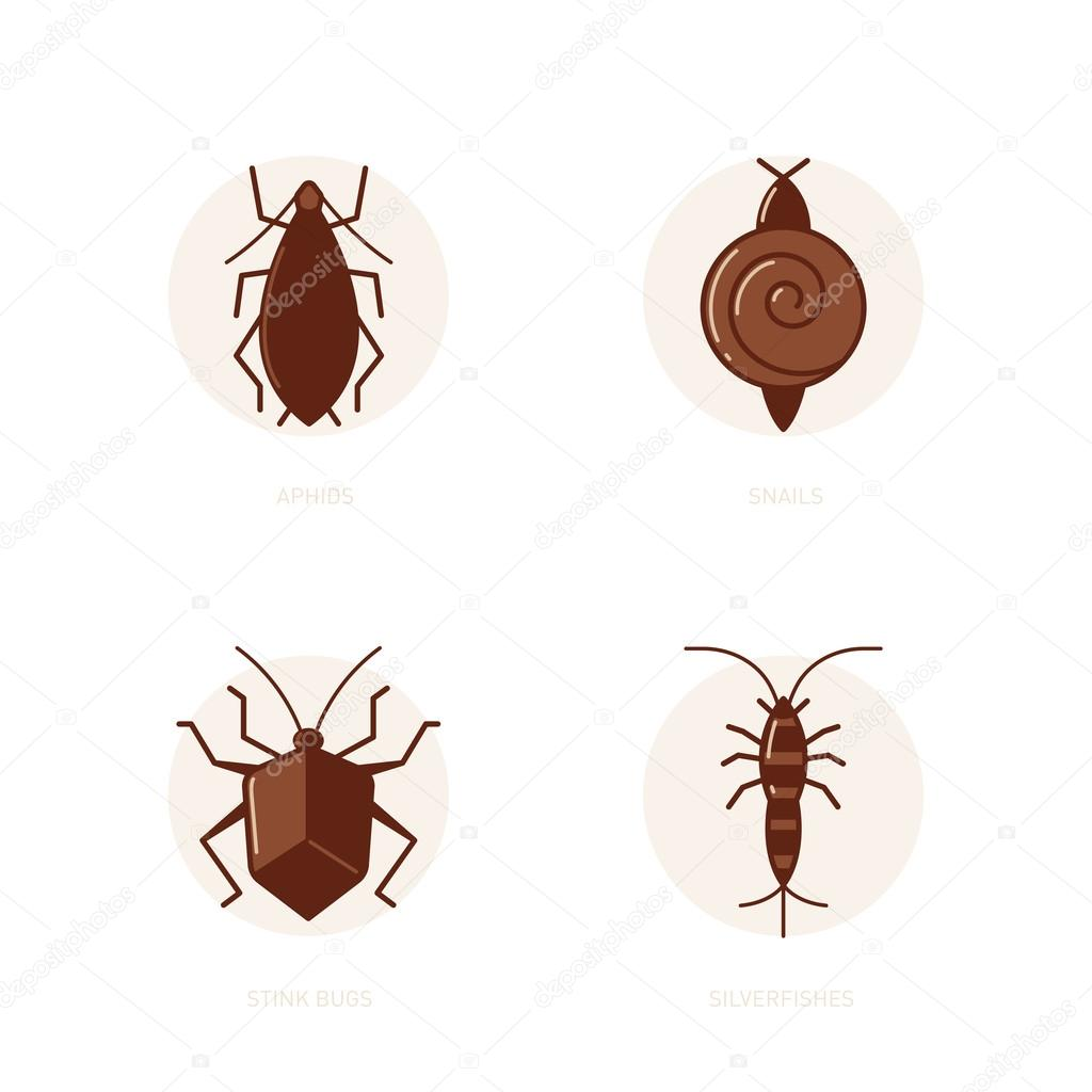 Aphids, snails, stink bugs, silverfish