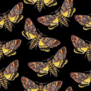 Death's-head moth seamless pattern