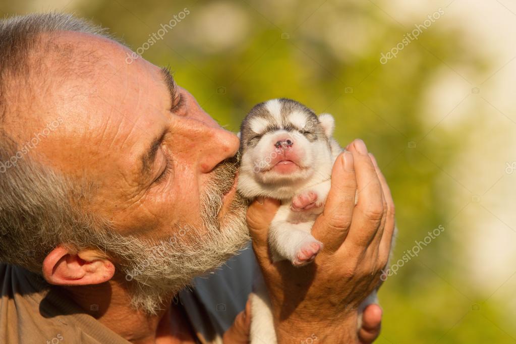 Old Man Kisses A Newborn Puppy Huskies Stock Photo Manickafoto