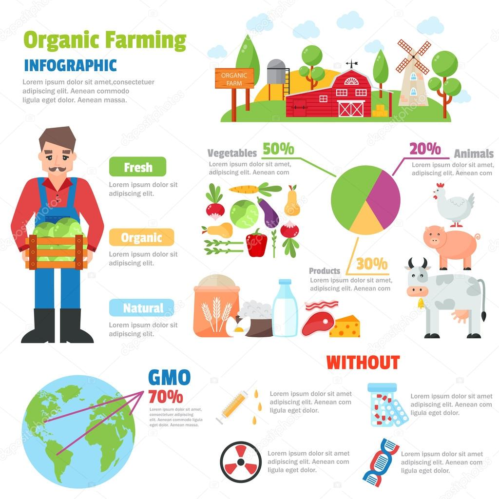 Organic farm vector illustration.