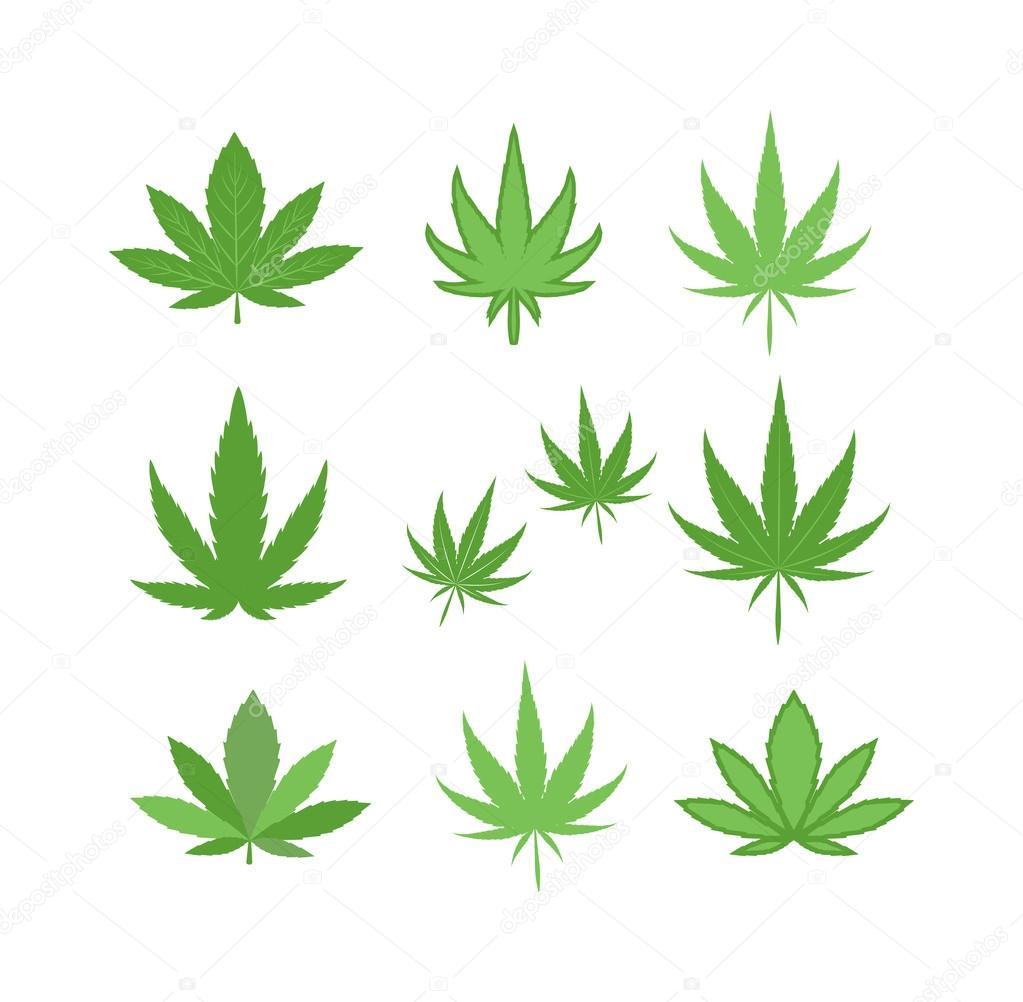 cannabis marijuana leaf vector illustration stock vector c luplupme gmail com 115109884 https depositphotos com 115109884 stock illustration cannabis marijuana leaf vector illustration html