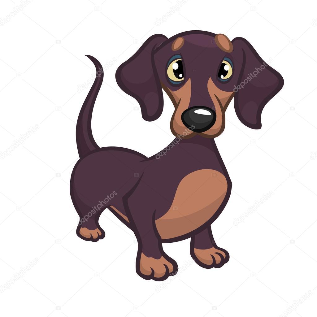 可愛い純血種のダックスフント犬の漫画のベクトル イラスト白い背景に