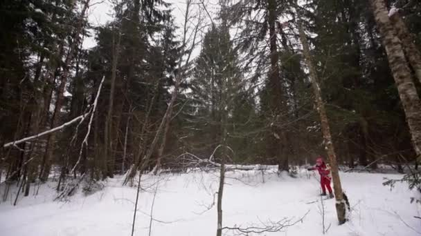 Grandmother cross-country Skiing Alone in Nature