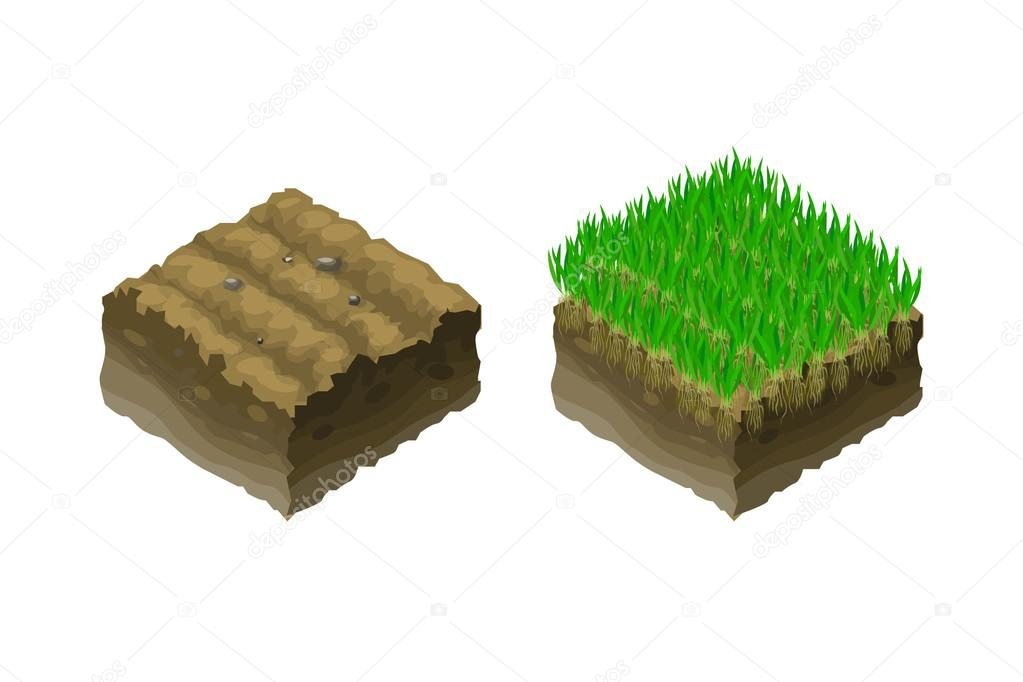 A piece of land, isometric projection, section of soil with green young grass seedlings.