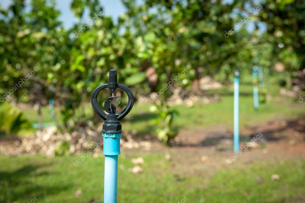 Impianto di irrigazione automatico irrigatore irrigazione for Irrigatore automatico