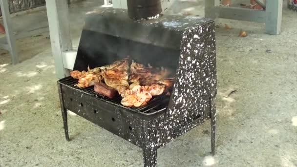 Kousky kuřecí vaření na gril 2