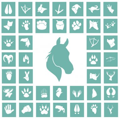 Set of forty animal icons