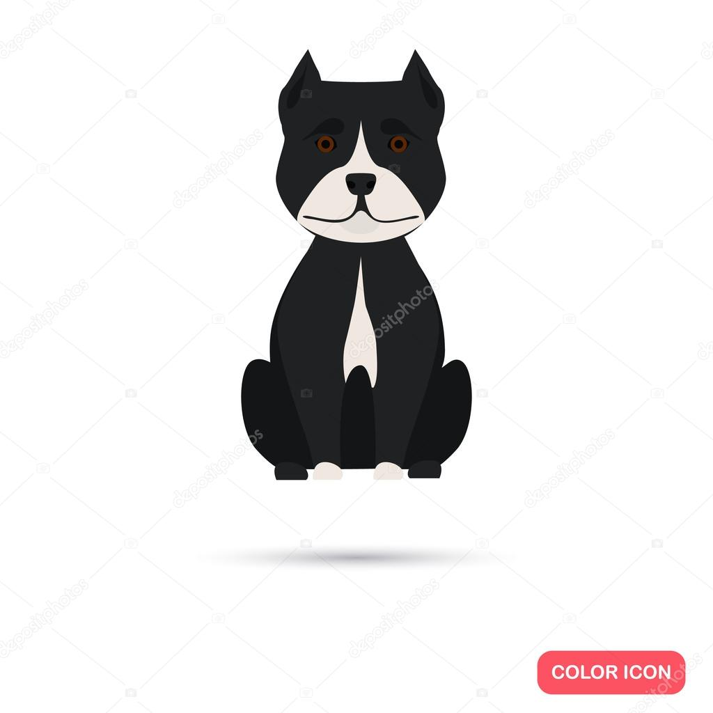 Dog color flat icon