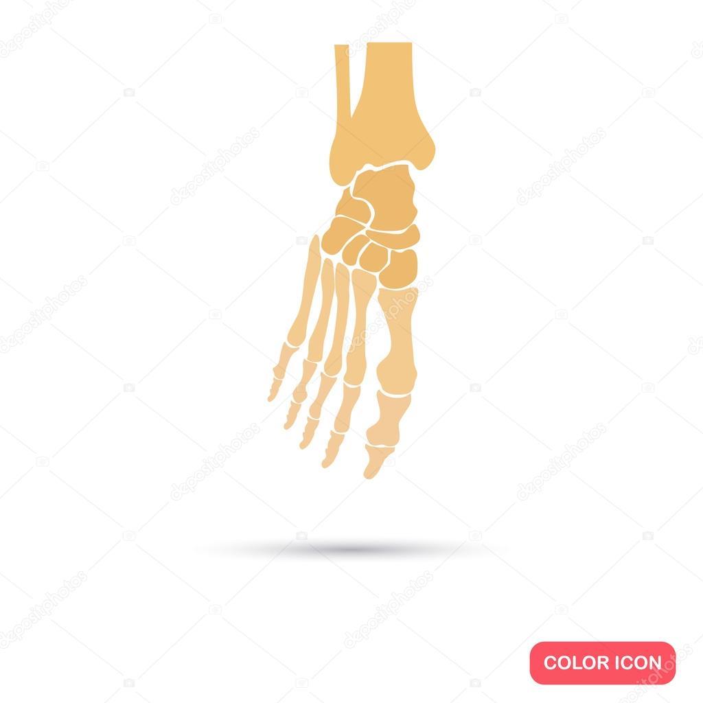 Icono de plano de esqueleto color de pie — Vector de stock ...