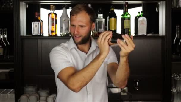 Bartender shaking a drink in a cocktail shaker