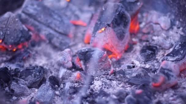 plameny ohně v krbu