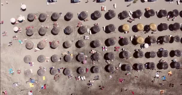 people on sunny beach