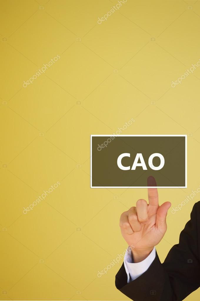 CAO o jefe de publicidad oficial o jefe contable — Fotos de Stock ...