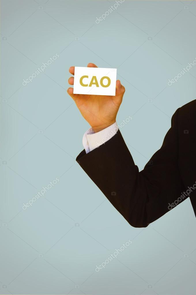 CAO o jefe de publicidad oficial o jefe contable — Foto de stock ...